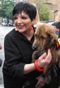Liza Minnelli Checks Into Rehab yet again