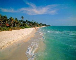Florida Interventions